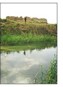 Um dos canais que sugam a água do Amu Daria